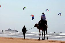 3_Essaouira_Morocco_kitesurf_camel_FB