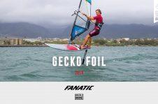 GECKO FOIL 2019