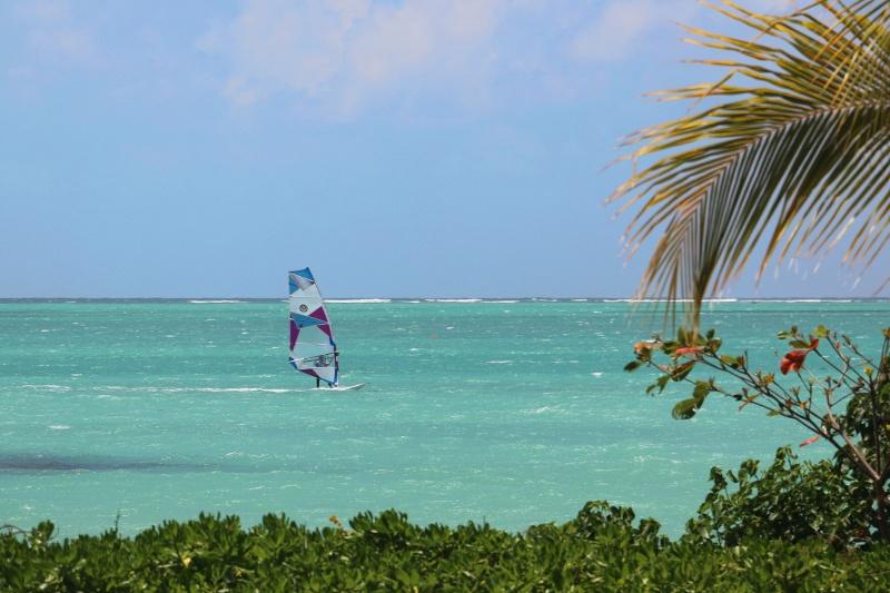 windsurfing_at_ion_club_xl
