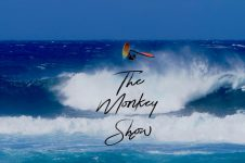 THE MONKEY SHOW IS BACK: RICARDO CAMPELLO
